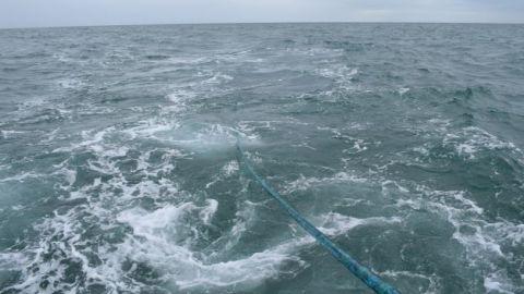 SEA Krait Array Trials 2021.JPG